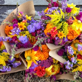 riverandseaflowers